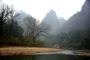 Wuyi Mtn 2 where grows 'Freak of Nature' tea